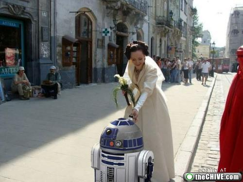 star wars lead 201 This Star Wars wedding is perfectly normal, not weird at all (22 Photos)
