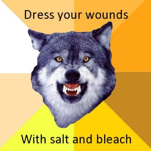 courage wolf funny 0 Courage Wolf, advice you can count on (17 Photos)