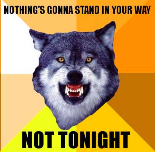 courage wolf funny 10 Courage Wolf, advice you can count on (17 Photos)