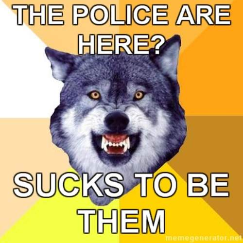 courage wolf funny 2 Courage Wolf, advice you can count on (17 Photos)
