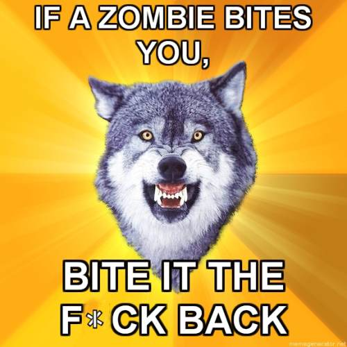 courage wolf funny 5 Courage Wolf, advice you can count on (17 Photos)