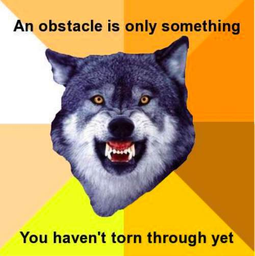 courage wolf funny 8 Courage Wolf, advice you can count on (17 Photos)