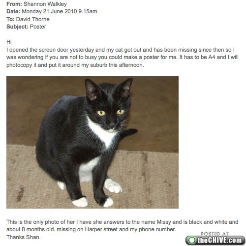 a 11 Secretary at design agency loses her cat and asks graphic designer to create a Missing poster