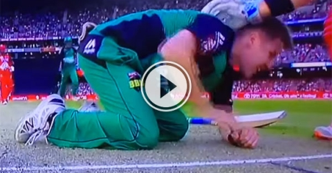 Bowler takes ball off nose and onto wicket (Video)