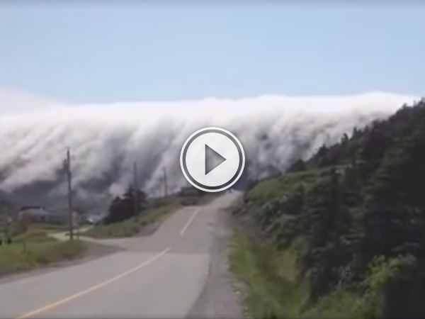 This is how fog rolls to town in Newfoundland; like a tidal wave (Video)