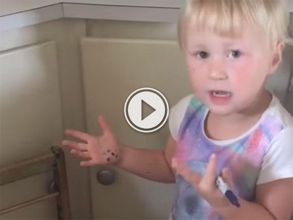 Girl turns sister into a zebra (Video)