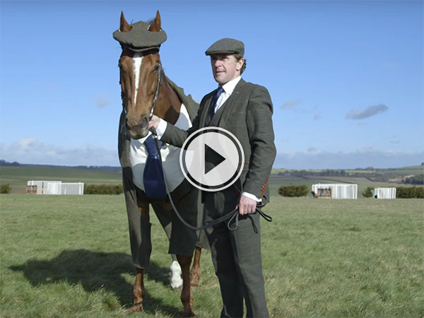 A horse in a tweed suit...(Video)