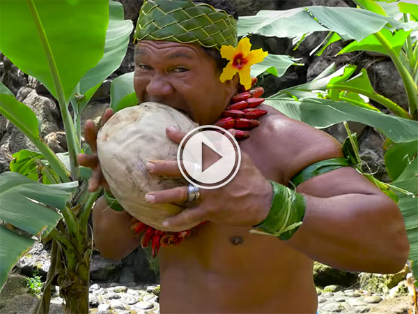The many ways to open a coconut (Video)