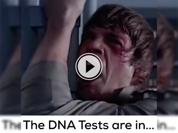 "Screenshot of the video with ""DNA tests are in"" written on it"