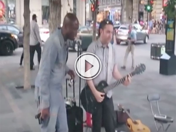 Seal joins a street magician in Montreal (Video)