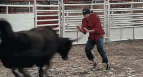 Angry bull throws away a man. gif