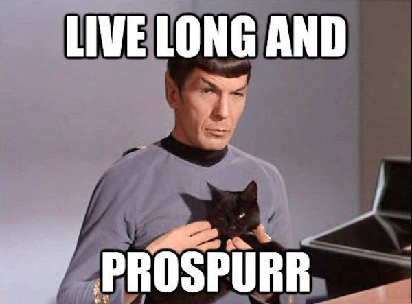 5cac62b3c3b07cc981cc080d1364adc0 Star Trek memes so nerdy youll need a Tricorder to read them (41 Photos)