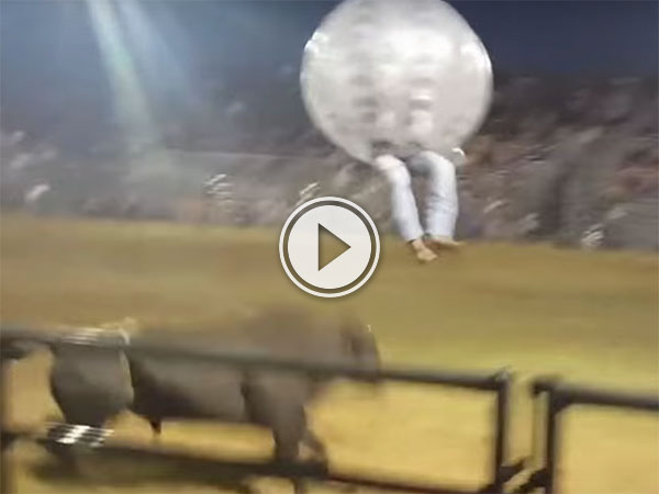 Zorb Soccer Rodeo is totally insane (Video)