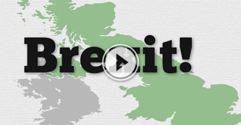 BREXIT summarised..Briefly (Video)