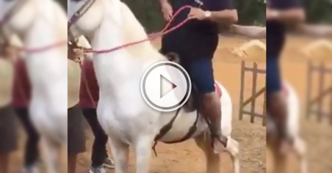 At least getting off the horse wasn't as hard as getting on (Video)