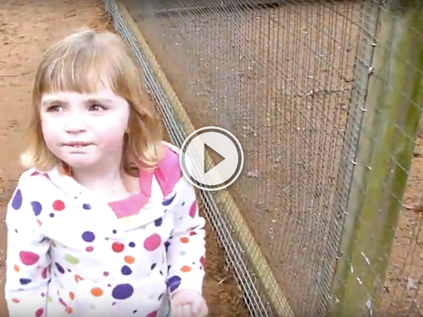 Yes kids, everybody farts, including mommy! (Video)