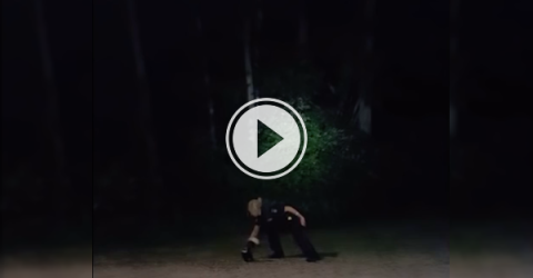 North Bay officers help a skunk in need (Video)