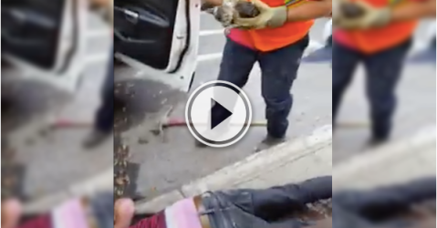 Diving into a sewer isn't a big deal, if it means saving a kitty! (Video)