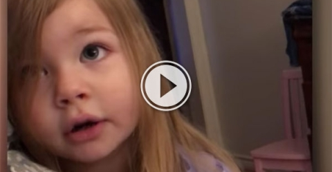 Daughter tells father off for leaving toilet seat up (Video)