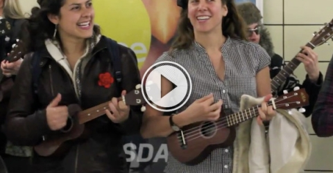 When suddenly a mob of happy, singing ukulele singers appeared! (Video)