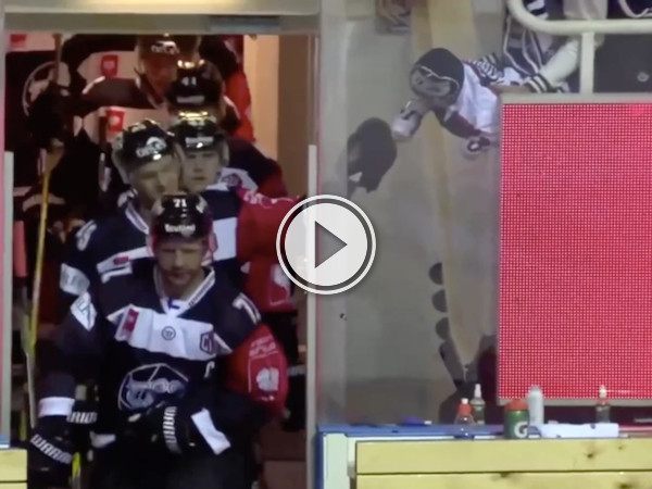 Baby fist bumping hockey players will warm up your morning! (Video)