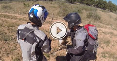 Dirt Bikers rescue deer caught in barbed wire