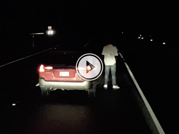 Drunk driver stops in middle of highway to take a piss (Video)