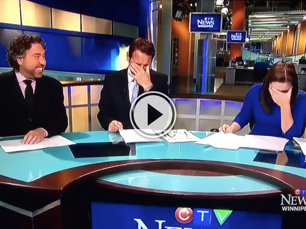 That's ok news lady, we'd be laughing at this too! (Video)