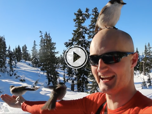 Is this guy secretly Snow White, or what? (Video)