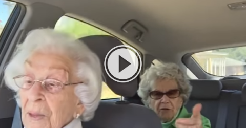 Two Grannies hilariously bicker as only best friends can