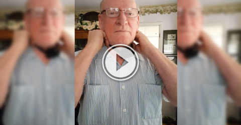 Brave dude tries out his dog's shock collar (Video)