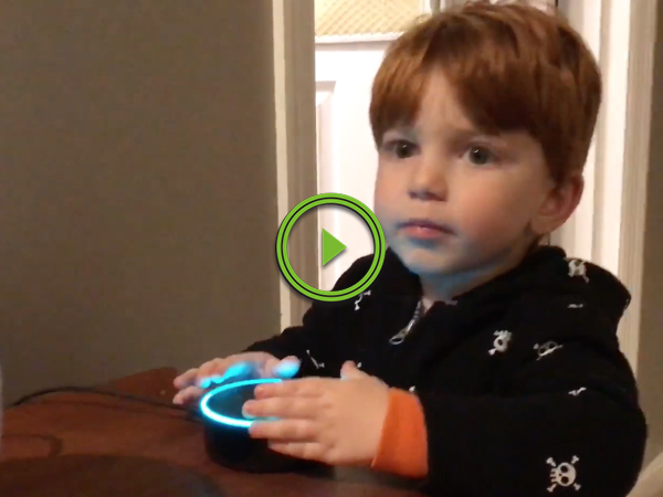 Amazon Echo tries showing porn to little boy (Video)