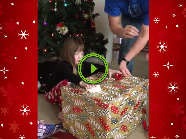 Little girl gets stealth cat for Christmas (Video)