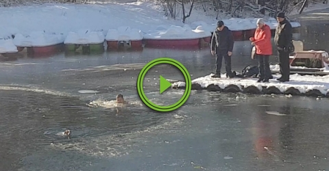 Russian man jumps into freezing water to rescue dog
