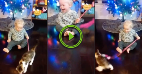 There's a surprisingly deep laugh coming from this kid (Video)