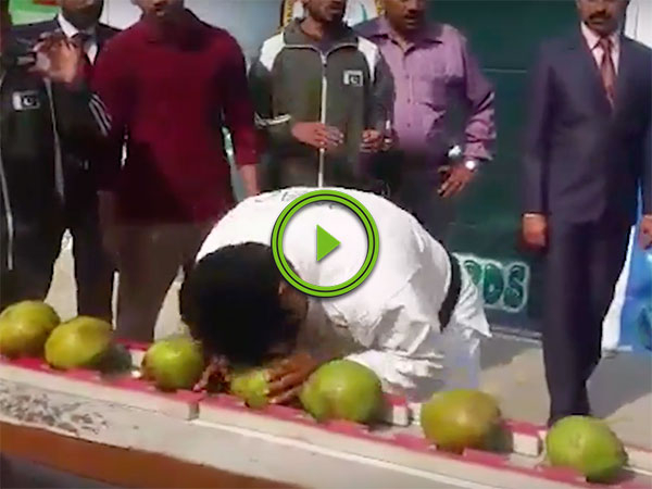 Indian man smashes 45 coconuts in 60 seconds (Video)
