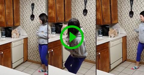Cat won't let women near kitchen cupboard (Video)