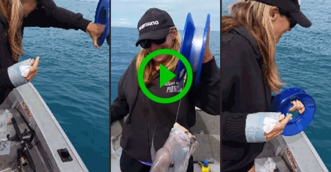 One-Handed Fishing (Video)