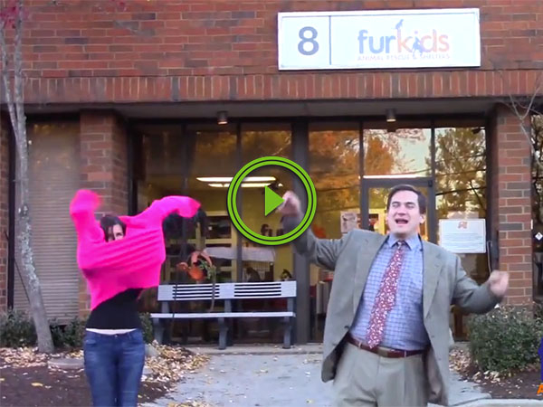 This local animal shelter commercial deserves an award (Video)