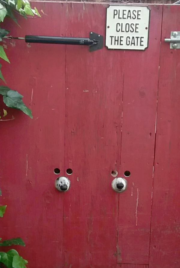 1981330 23 Dogs and their pup friendly gate get the photoshop treatment (21 Photos)