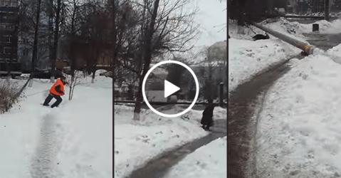 Women survives near-fatal tree felling accident (Video)