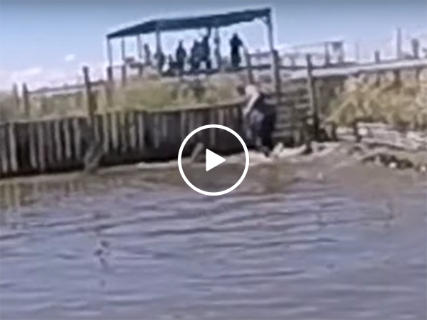 Man survives close call at Gator farm, nearly gets bitten (Video)