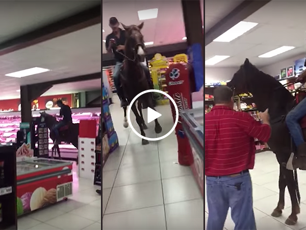 South African man rides horse through supermarket (Video)