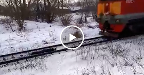 Russian kid lays underneath oncoming train (Video)