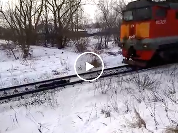 Russian kid lays underneath oncoming train (Video)