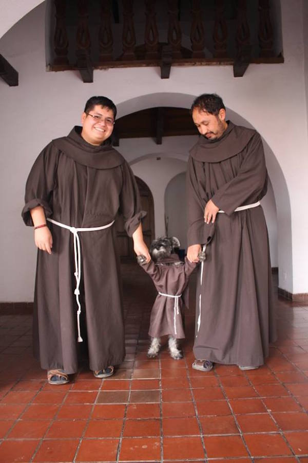 16864049 1478968862127852 6396489964448251094 n Monastery adopts a homeless dog, becomes Friar Moustache (7 Photos)