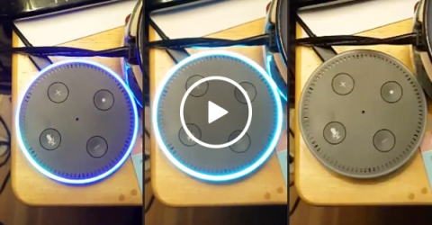 """""""Alexa, are you connected to the C.I.A.?"""" (Video)"""