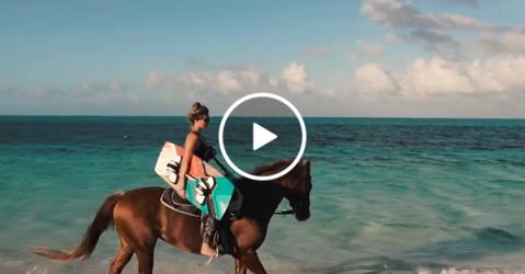 Horse pulling wakeboarder looks like Summer incarnate