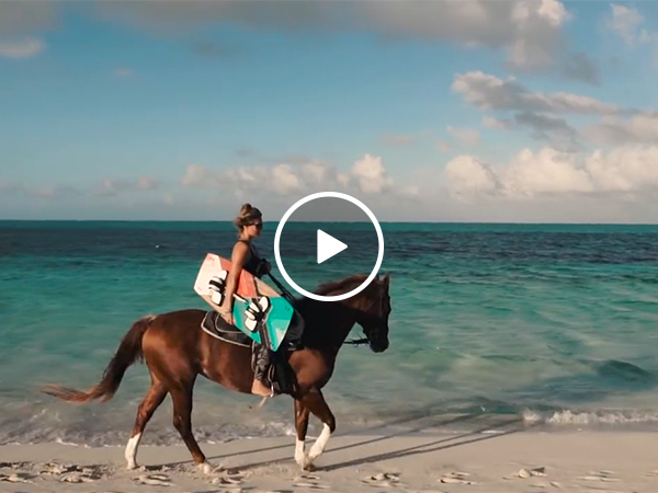 Horse pulling wakeboarder looks like Summer incarnate
