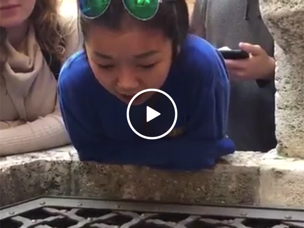 Girl beautifully sings into well in Italy (Video)